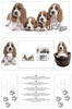 Pebble Modding Skin DS [Puppies]