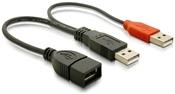 DeLOCK Y-Kabel USB Daten- und Powerkabel