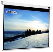 Celexon Professional Line Rollo Leinwand 120x120cm 1:1,