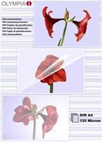 Olympia Laminierfolien DIN A4 100 Stück 125 mic