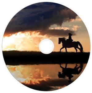 Verbatim DVD+R DL 8.5GB 8X Inkjet white 25er Spindel (Article no. 90277754) - Picture #3