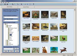 PrintShop 21 Essentials (DVD) (Article no. 90411427) - Picture #3
