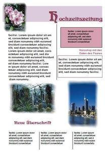 Zeitungen selbst gestalten 2012 (Article no. 90434464) - Picture #5