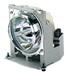 ViewSonic Ersatzlampe RLU-802+